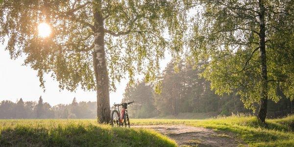 Road bike at sunset