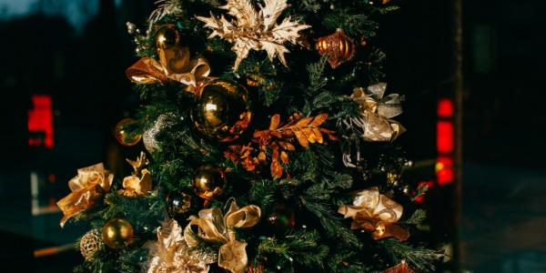 The 12 tips of Christmas