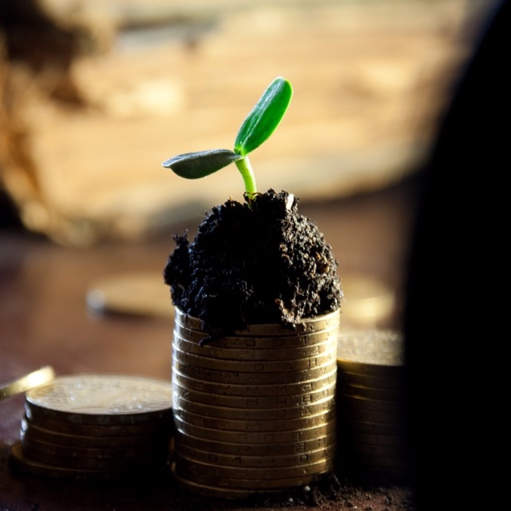 Smart investing: using dividends to increase returns